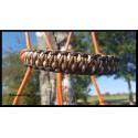 Licol Prémium Tressage Salamandre